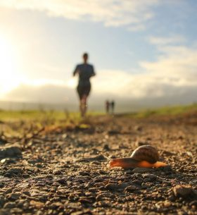 corredor bajo el sol