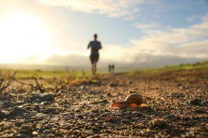 Corriendo bajo el sol